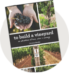 To Build a Vineyard Book Icon